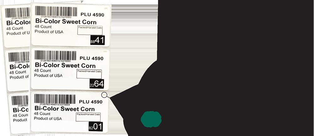 CFS Label